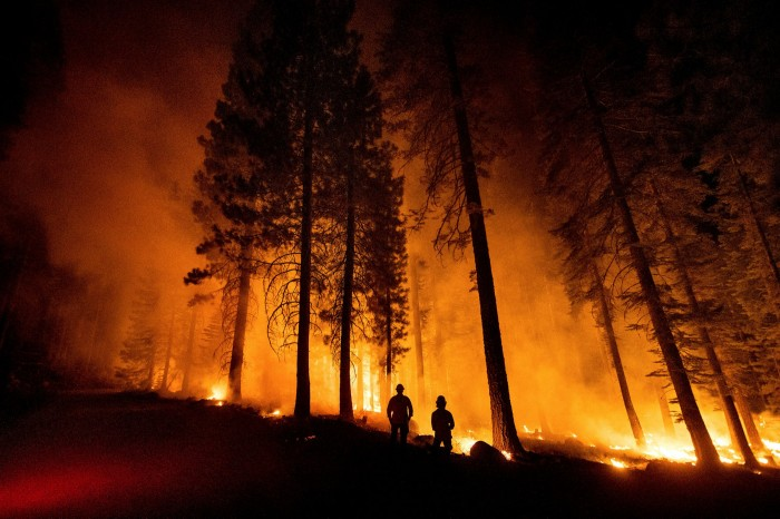 Wildfires burn down trees in California. A fundamental tenet of offsetting is that the projects deliver permanent benefits, but fires such as these spew carbon that had been stored in the trees back into the air