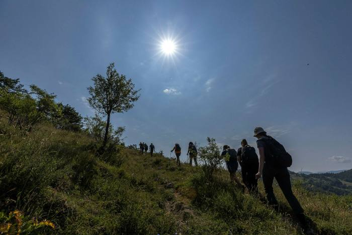 Silhouettes of a line of people walking on a green earth with a bright white sun high in the sky