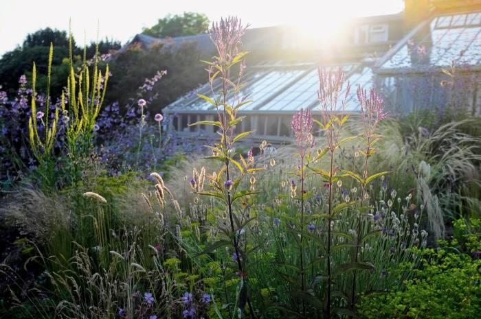 Sarah Price's Abergavenny garden