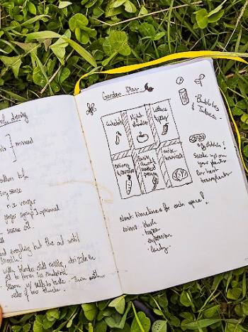 A journal planning a vegetable plot