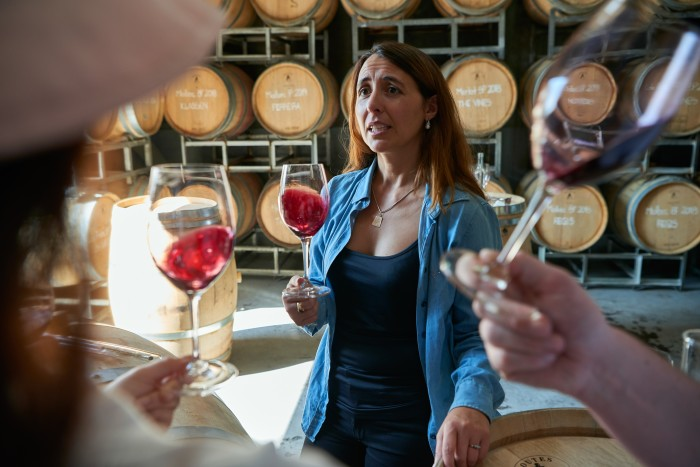 Membership of The Vines includes a programme of tastings, events and tours
