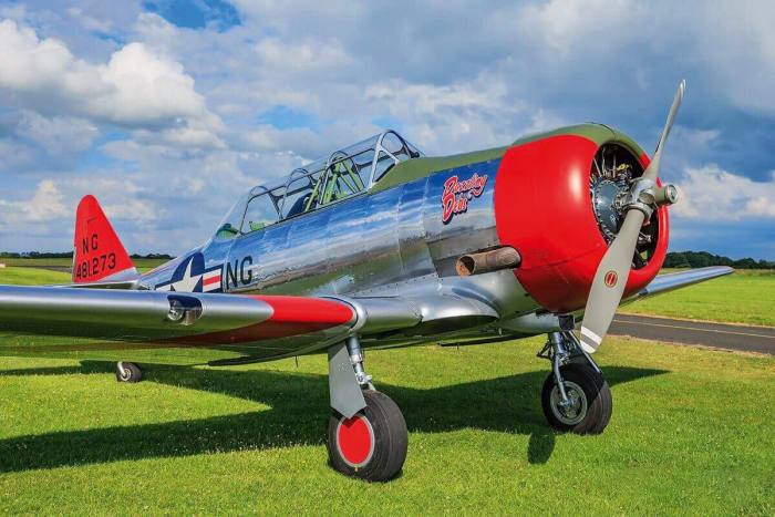 Michael Wright's restored Harvard. Wright says 'It is not difficult to fly one, but it'll show your inaccuracies'