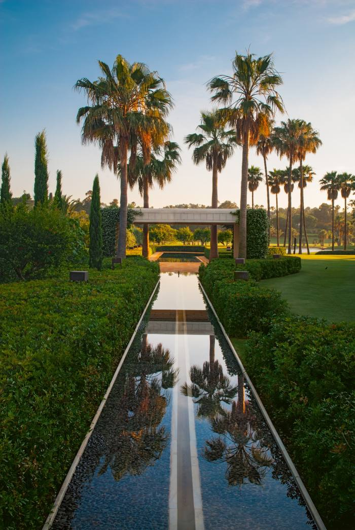 A linear pool and palm trees in a garden in Sotogrande, Spain