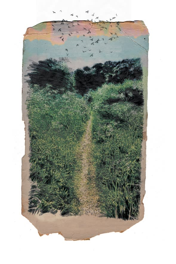 'Our paths through flowers' illustration from the poem 'After a Journey' by Thomas Hardy