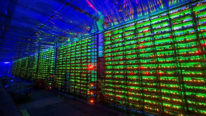 Picture of illuminated mining rigs operating inside racks at a cryptocurrency mining farm