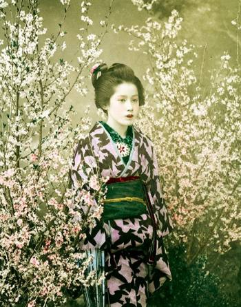 Nineteenth-century portrait of a girl among cherry-blossom trees