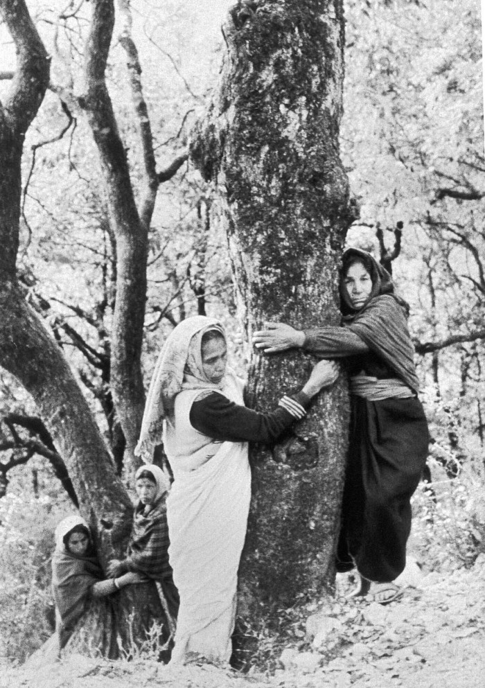 Chipko Andolan began in Reni in 1974, when local women fended off loggers to stop a nearby forest from being razed