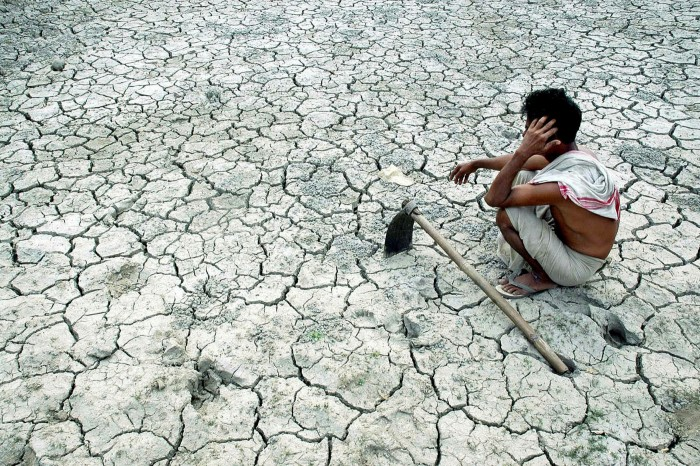 A farmer waits for rain on his drought-hit paddy field in Morigoan, in India's northeastern Assam state