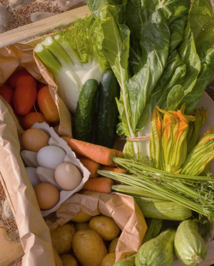 Organic vegetables and eggs from the estate