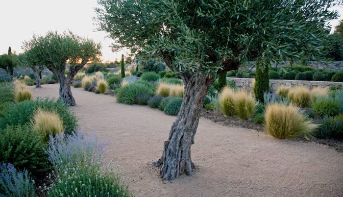 Above: a garden in Avila, Spain, by Urquijo-Kastner