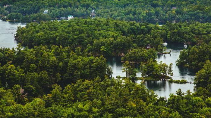 Forest near Gananoque, Ontario, Canada