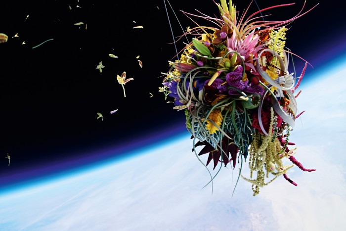 Azuma sent plants into space for his In Bloom project