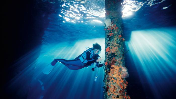 As part of its Perpetual Planet initiative, Rolex supports the marine-conservation work of Dr Sylvia Earle and Mission Blue