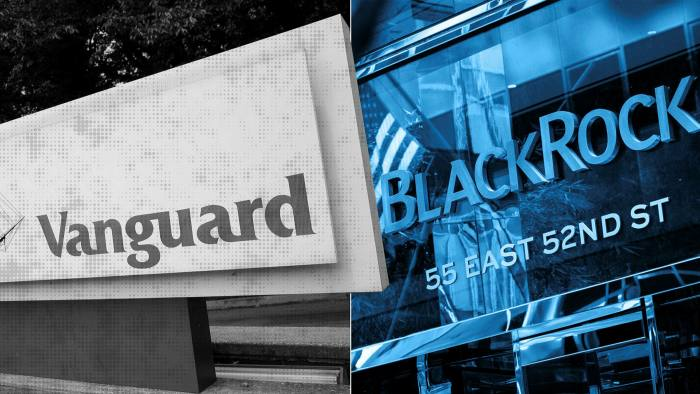 Vanguard had net inflows of $67.7bn in the first six months of the year, while BlackRock gathered almost $74bn, making them the world's best-selling mutual fund managers