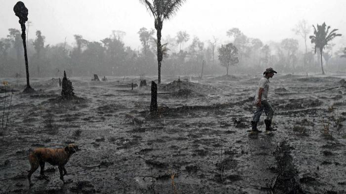 A farmer walks through a burnt area of the Amazon rainforest in Brazil