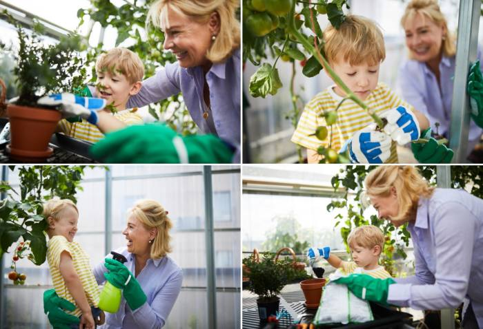 A grid of four photos with an older woman helping a young boy to tend plants