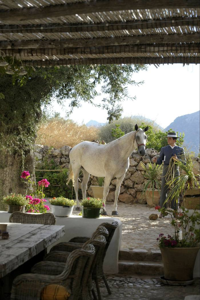 Man standing with a white horse