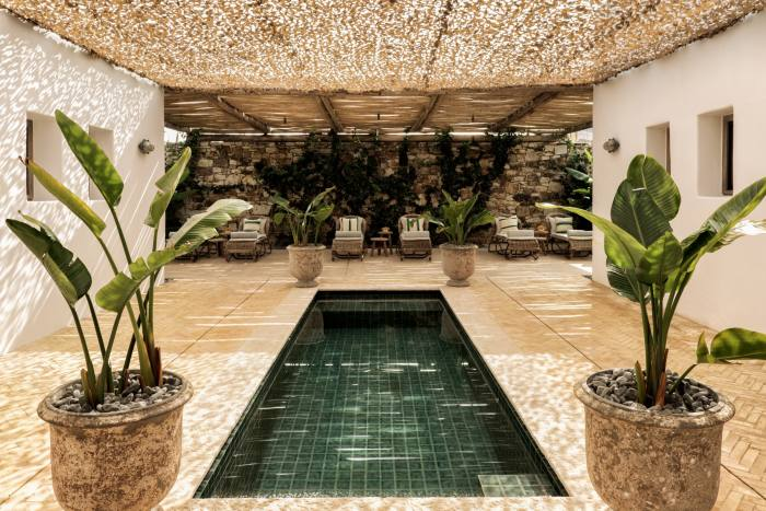 A lap pool at the Rooster spa