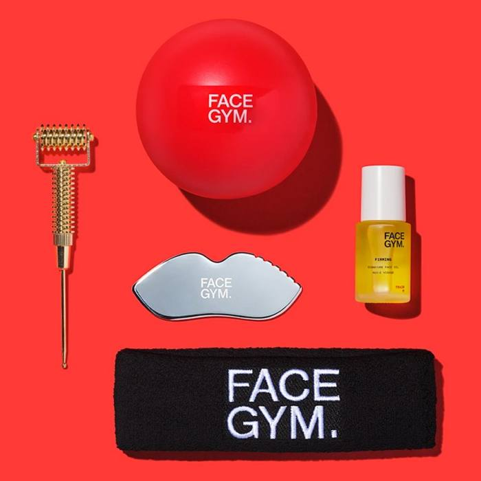 FaceGym Essential Online Workout Kit, £153