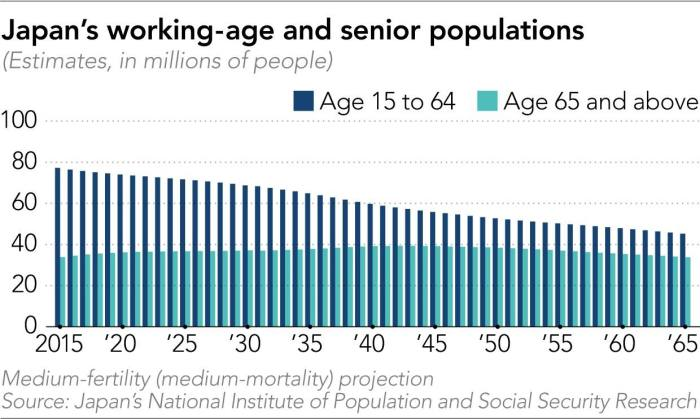 A chart showing Japan's working-age and senior populations