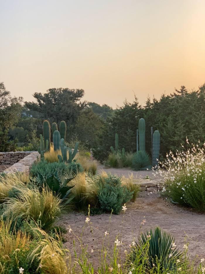 A garden in Formentera by Luciano Giubbilei
