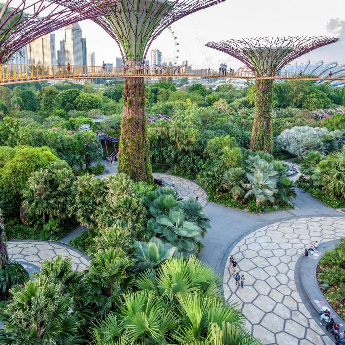 Singapore's famed Gardens by the Bay