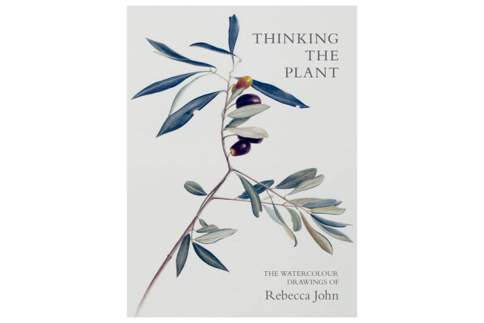 Thinking the Plant: The Watercolour Drawings of RebeccaJohn