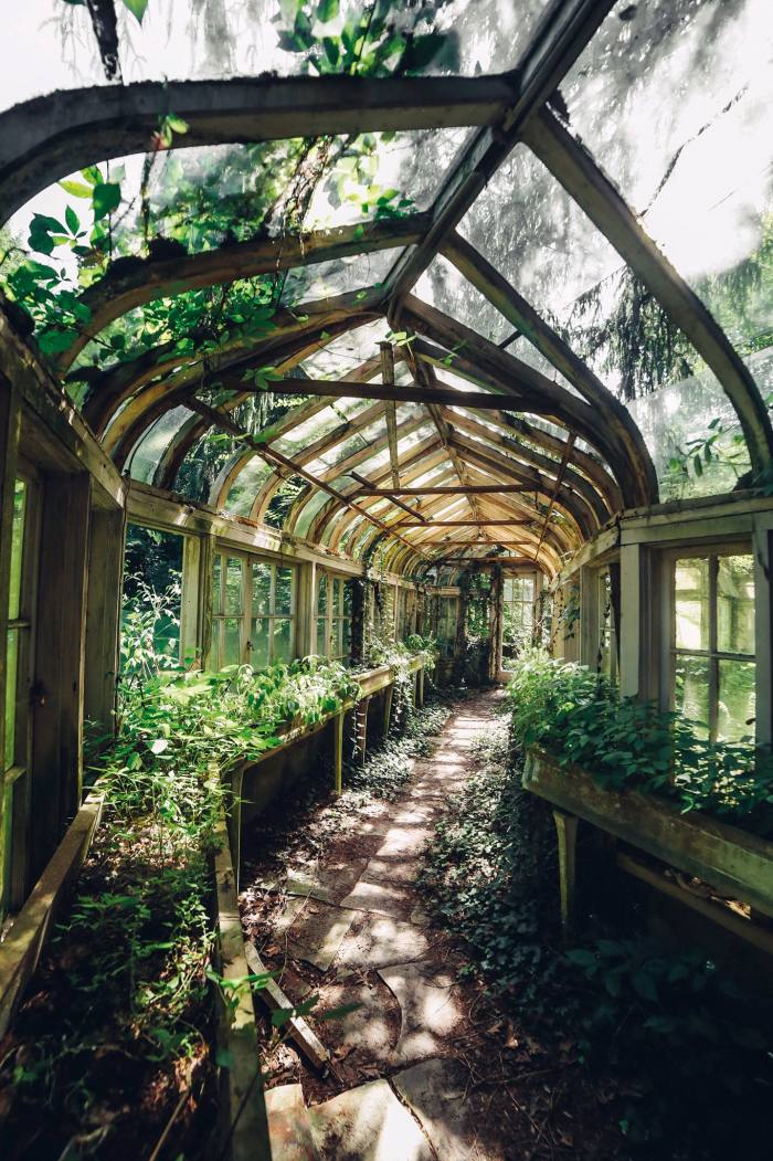 A greenhouse in the garden of a derelict Indiana mansion, as seen on Instagram's @itsabandoned