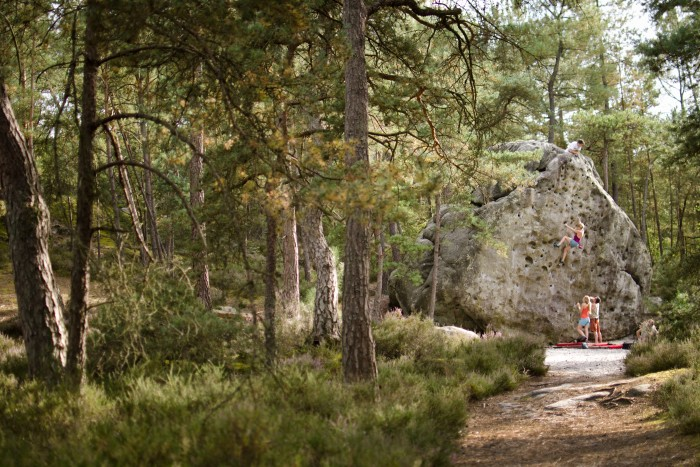 Bouldering at Fontainebleau, an hour outside of Paris