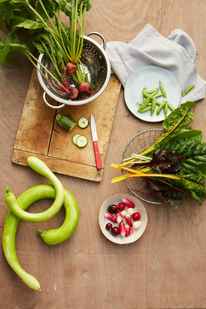Her book demonstrates how to produce vegetables in even the smallest living spaces