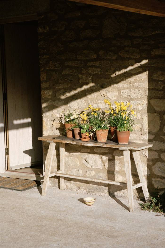 A display of miniature daffodils on a side table outside the house