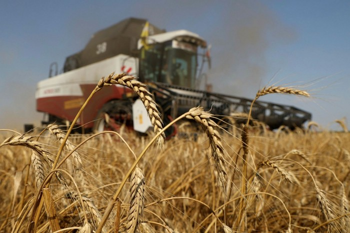 A combine harvester drives through a wheat field during the summer harvest on a farm in Tersky village, near Stavropol, southern Russia