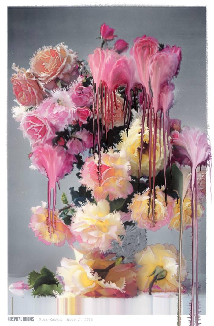 Rose I, 2012, by Nick Knight