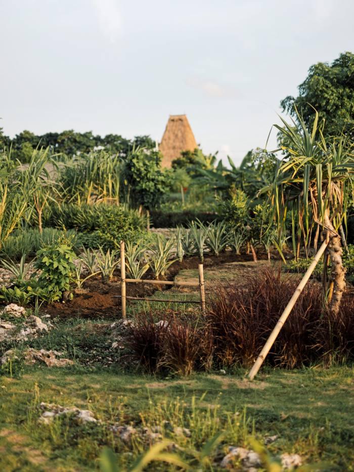 The farm and atelier at Cap Karoso