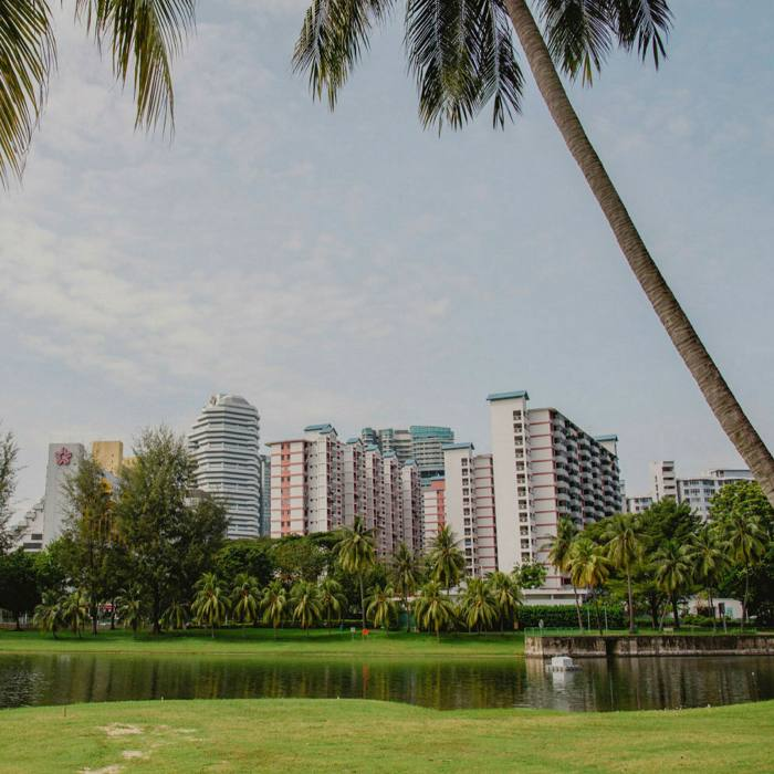 Kallang Riverside Park: by this part of the route, you are surrounded by greenery