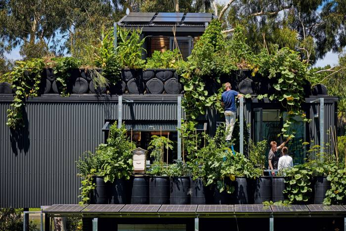The terrace garden features. more than 200 species of plants, a vegetable patch and a beehive