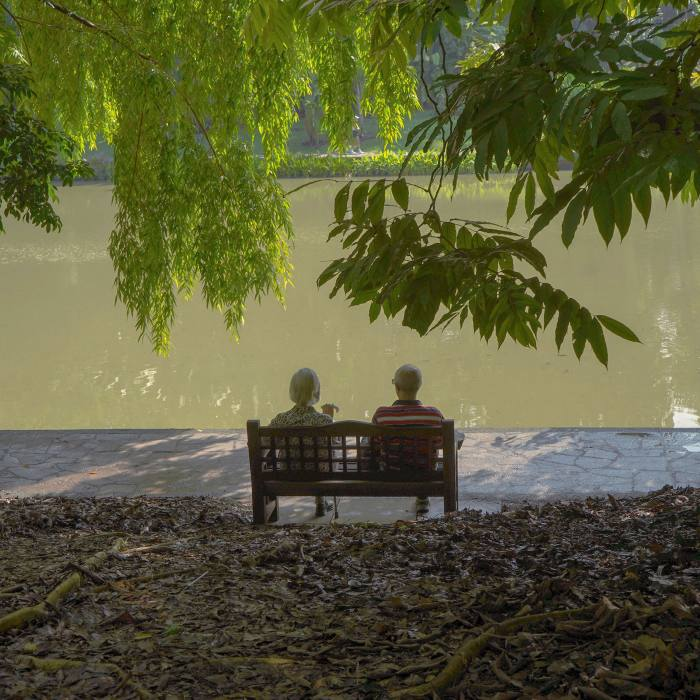 Moments of reflection: despite the park's popularity, it's easy to find a quiet, shaded spot