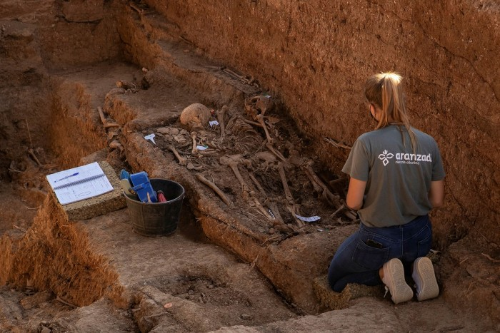 Human remains in a mass grave in Seville
