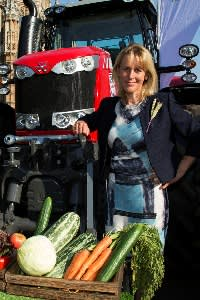 Minette Batters, president of the National Farmers' Union, says Brexit represents 'a major reset moment for food and farming, and a failure to get it right will be disastrous'