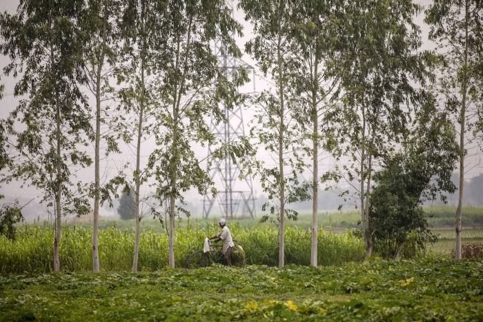 Some of India's rural migrant workers are reluctant to return to work in the cities