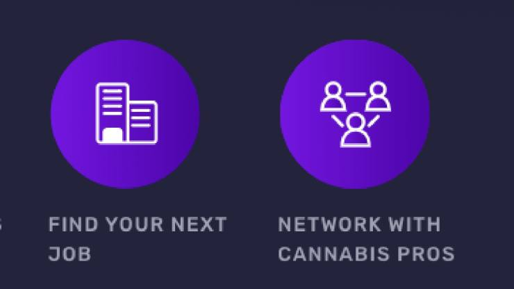 Like LinkedIn, but for weed