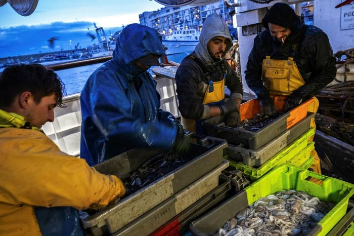 Fishermen sort and clean fish in the harbour in Sète, France on Tuesday