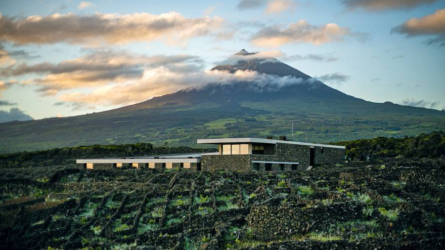 Behind the dazzling wines of the wild Azores