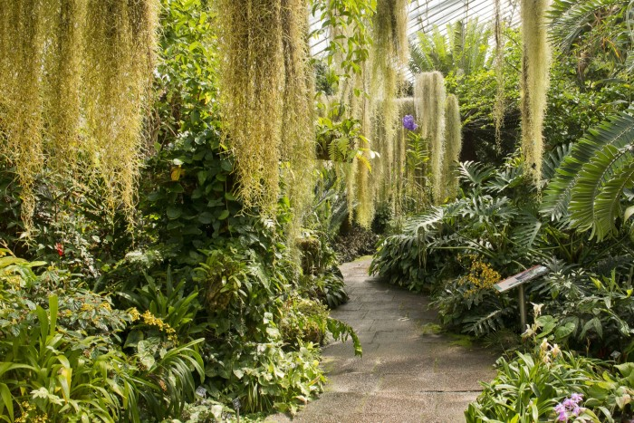 The fragrance uses more than 35 ingredients inspired by the Edinburgh Royal Botanic Garden
