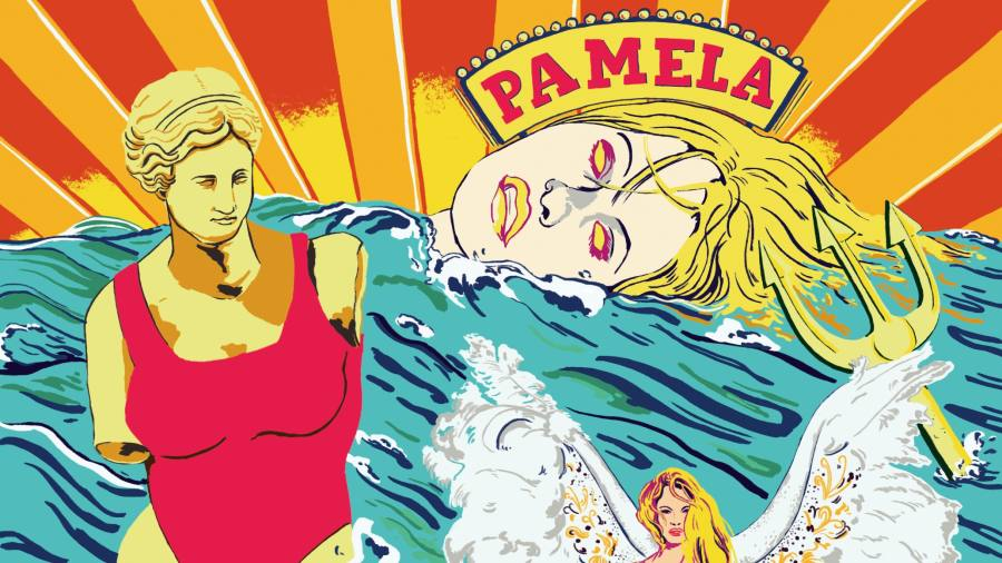 Pamela Anderson: 'I collect pop artists and they collect me'