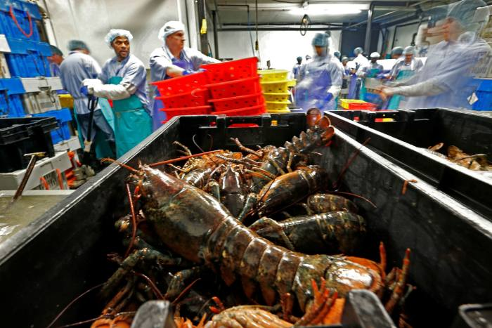 A lobster processing plant in Maine.  The US likely struck the mini deal with the EU only to help Republican Senate candidate Susan Collins in her battle for re-election