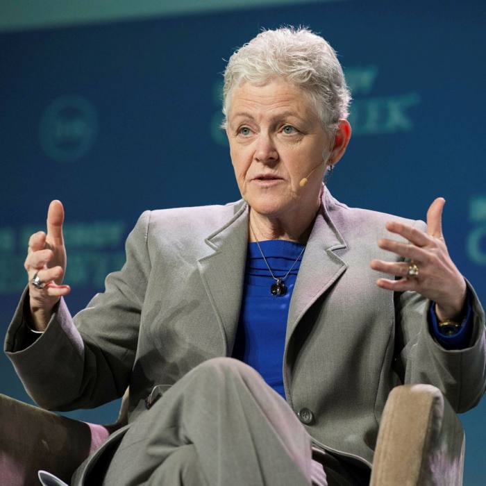Gina McCarthy, a former head of theEnvironmental Protection Agency, will be the Biden administration's climate tsar, co-ordinating policy