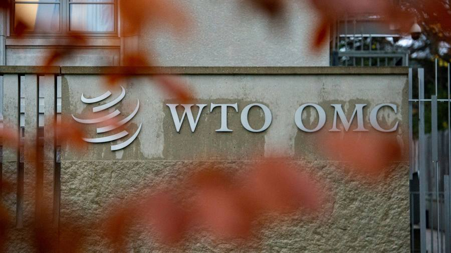 WTO seeks a peacekeeper rather than a revolutionary