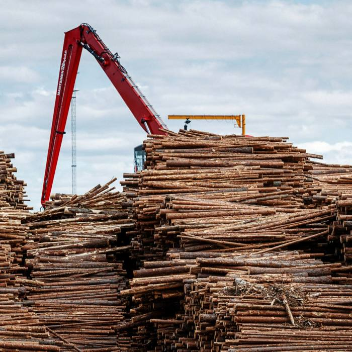 The EU requires supply chain reporting for timber