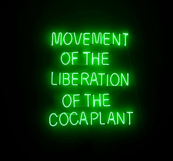 Wilson Díaz, Movement of the Liberation of the Coca Plant, 2012-2014